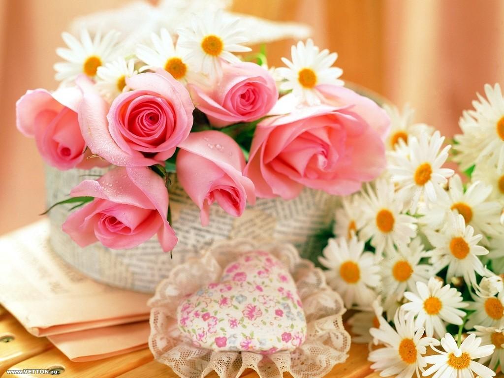 El 14 de febrero prefiero rosas no margaritas puerto - Compro vendo regalo la palma ...
